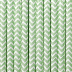 10 CHEVRON STRAWS – MINT AND WHITE